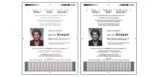 Color and Gray Scale versions of promotional flier for Avayar